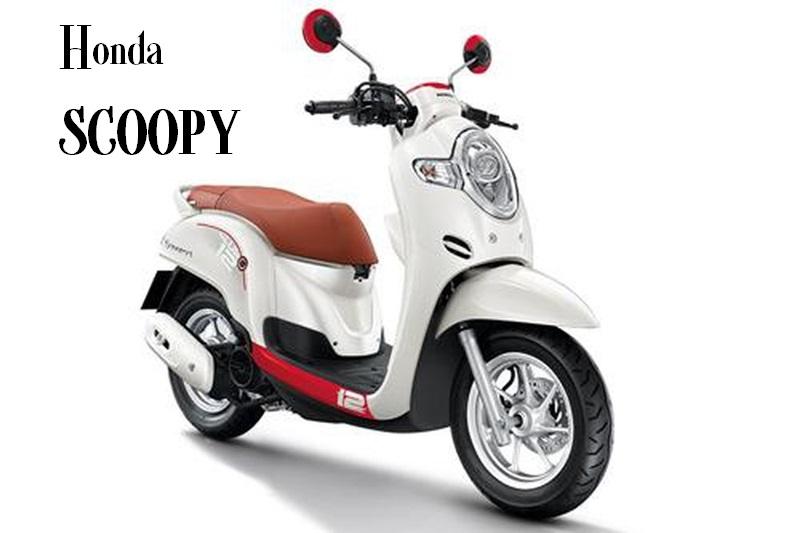 Honda Scoopy trẻ trung cá tính